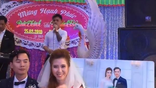 Người yêu cũ lên sân khấu hát 'Tiễn em theo chồng': Chú rể 'không cảm xúc', cô dâu cười tươi rói