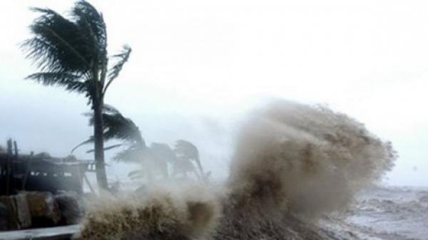 Quảng Ninh: Cấm tàu du lịch ra biển, 2000 du khách trên đảo Cô Tô về đất liền khẩn cấp do ảnh hưởng của bão