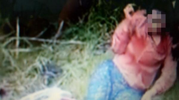 Đang chạy xe trên quốc lộ, người phụ nữ bất ngờ bị đâm trọng thương
