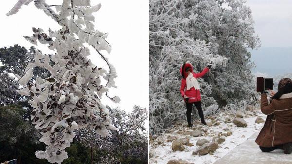 Cận cảnh tuyết rơi liên tục đẹp như Châu Âu trong lòng Cao Bằng, check in dưới cái lạnh tê tái ngay thôi