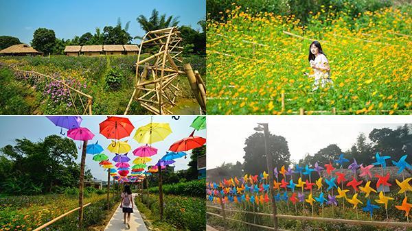 Cao Bằng: Xuất hiện địa điểm check-in cực xịn xò FREE vé vào với ngọn đồi chong chóng, thung lũng hoa đang mùa nở rộ