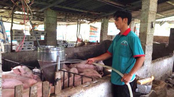 Nông dân Cao Bằng thu nhập KHỦNG nhờ bí quyết làm kinh tế giỏi