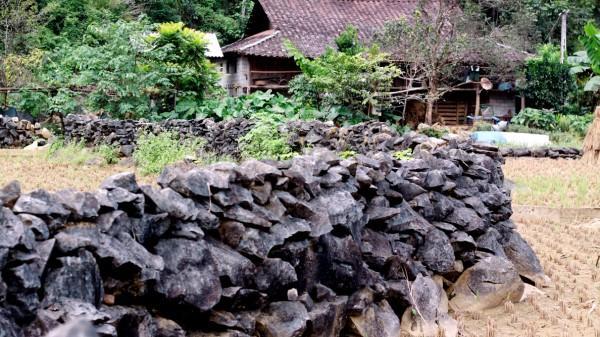 Nét đẹp rất riêng của những hàng rào đá độc đáo ở Cao Bằng