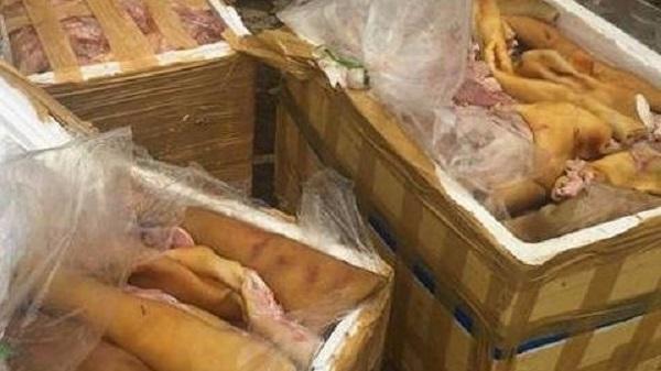"""Đắk Lắk: Phát hiện 250kg thịt động vật đang bốc mùi """"đi"""" xe khách giường nằm"""