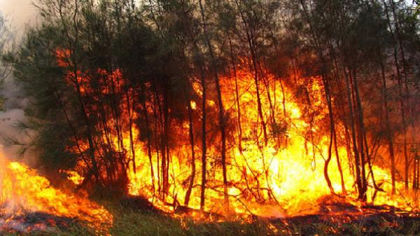 DỰ BÁO THỜI TIẾT (27/2): Nắng nóng kéo dài, nguy cơ cao xảy ra cháy rừng