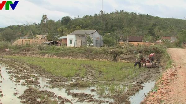 Không đủ căn cứ gọi thôn 10 tháng 3 xã Ea Bông là 'làng ung thư'