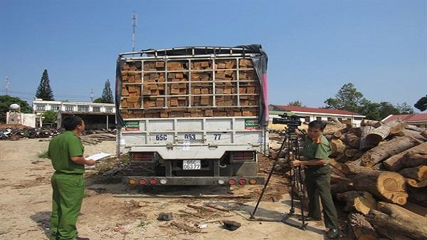 EaH'Leo: Bắt xe ô tô vận chuyển hơn 32 m3 gỗ lậu