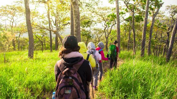 Băng rừng trên cung đường trekking đẹp nhất Việt Nam