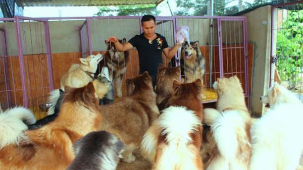 Mục sở thị trang trại chó cảnh quy mô lớn nhất ở Đắk Lắk