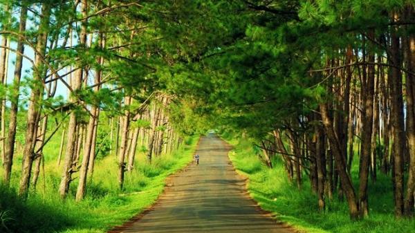 Cung đường 450 km TP.HCM - Buôn Mê Thuột không theo quốc lộ