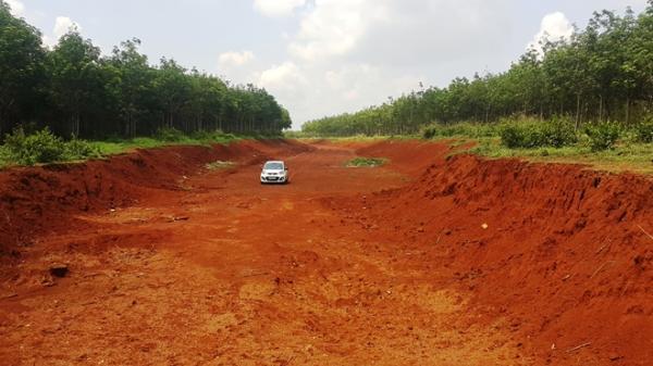 Đắk Lắk: Cây trồng c. h.ế.t  khô vì… chờ dời trạm BOT