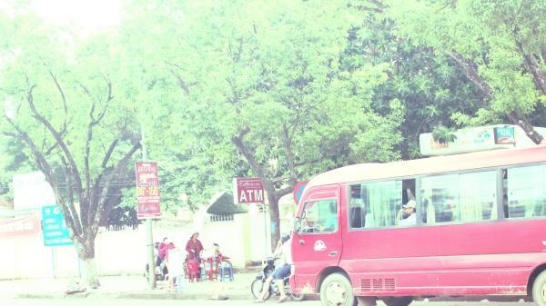 Xe dù, bến cóc tung hoành, giành giật cả xe buýt ở Đắk Lắk