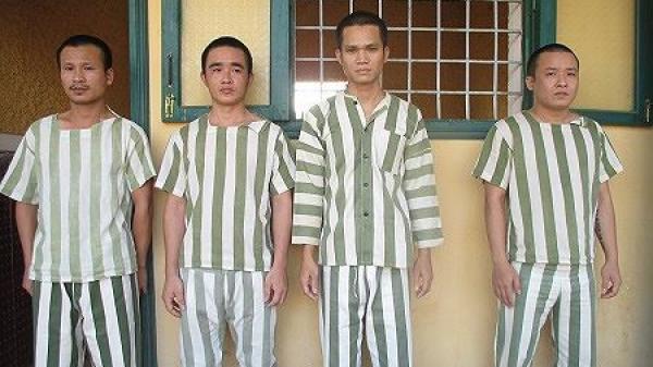 Đắk Nông: Bắt nhóm thanh niên làm giả giấy tờ rồi thuê xe ô tô mang đi cầm cố để chiếm đoạt tài sản