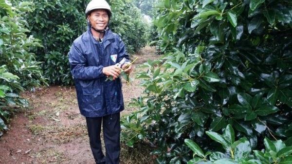 Đắk Lắk: Tỷ phú vườn ươm khởi nghiệp từ bàn tay trắng