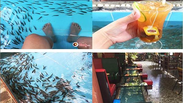 """CỰC HOT: Xuất hiện quán cafe massage cá đầu tiên đang """"làm mưa làm gió"""" ở Buôn Ma Thuột"""