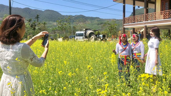 Quảng Ngãi: Check-in vườn hoa rực rỡ giữa núi rừng Thọ An đẹp say đắm lòng người