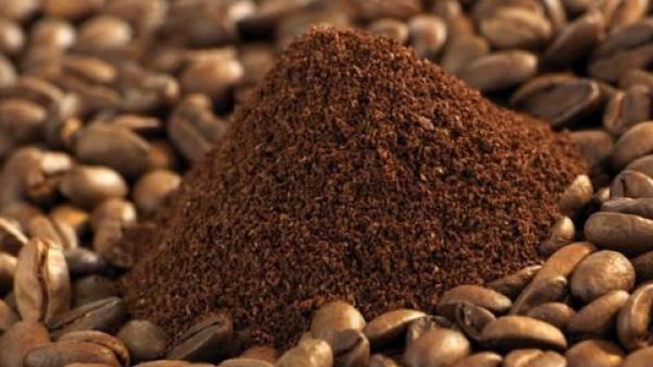 Giá cà phê các tỉnh Tây Nguyên tiếp tục giảm nhẹ, giá tiêu không có biểu hiện tăng