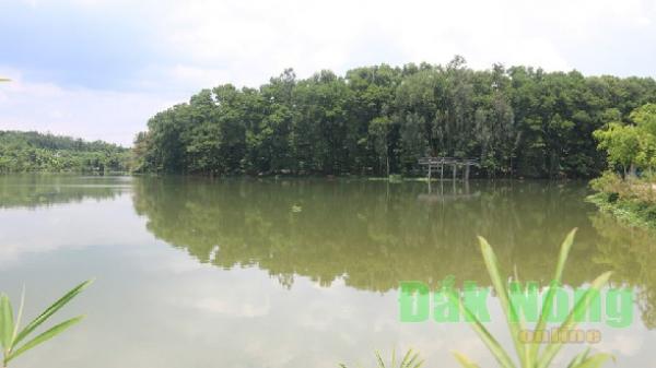 """Hồ Trúc: """"Lá phổi xanh"""" giữa lòng Chư Jút"""