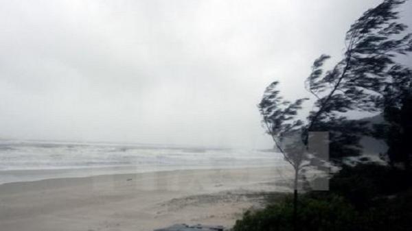 Các tỉnh, thành từ Đà Nẵng đến Kiên Giang chủ động ứng phó với áp thấp nhiệt đới