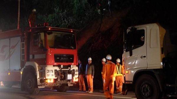 Đà Nẵng: Cháy lớn tại rừng Nam Hải Vân