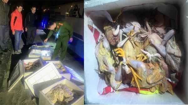 Thu giữ hơn 200 kg thịt động vật bốc mùi đang trên đường vận chuyển vào Đà Nẵng tiêu thụ