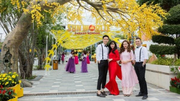 """Giới trẻ Đà thành háo hức chờ đón Lễ hội """"Mai vàng sắc xuân"""" Sun World Danang Wonders"""