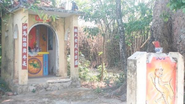 Đà Nẵng: Kỳ lạ ngôi miếu 500 tuổi không bao giờ đổ độc nhất Việt Nam
