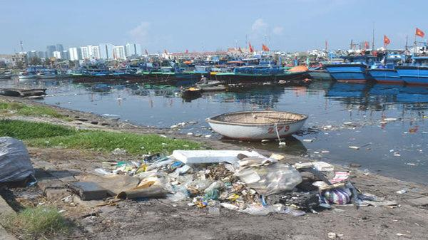 """Đà Nẵng ra tiếp """"tối hậu thư"""" xử lý môi trường tại âu thuyền và Cảng cá Thọ Quang"""