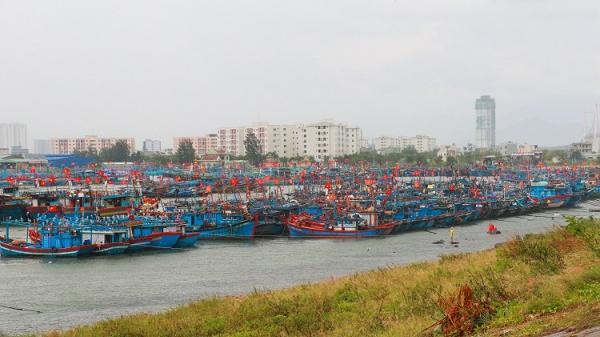 Đà Nẵng: Cảnh báo gió mạnh, mưa lớn do bão số 10 Doksuri gây ra