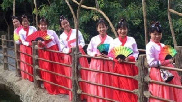 Đà Nẵng: Tổ chức lễ hội giao lưu văn hóa Việt - Hàn