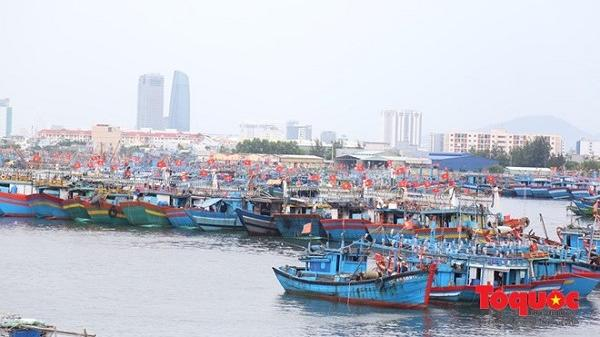 Áp thấp nhiệt đới: Đà Nẵng có thể cho học sinh nghỉ học từng vùng, từng khu vực