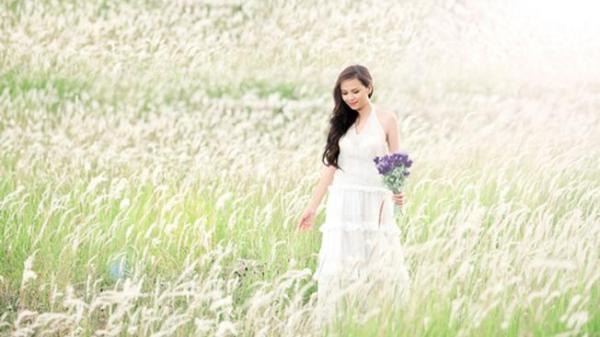 """Ngỡ thiên đường """"tuyết trắng"""" mơ ảo bởi cánh đồng cỏ lau đẹp đầy mộng mở Đà Nẵng"""