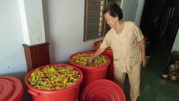 Nước rửa bát siêu độc đáo từ... rác thải, dùng xong có thể tưới cây ở Đà Nẵng