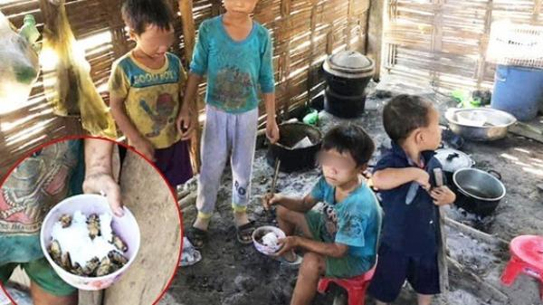 """Đằng sau hình ảnh những đứa trẻ ăn cơm nguội với """"ve sầu"""": Hoàn cảnh vô cùng khó khăn, từ bé tới giờ không biết cái kẹo tròn méo ra sao"""