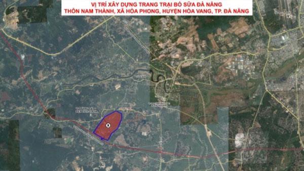 Đà Nẵng sẽ có Trang trại bò sữa