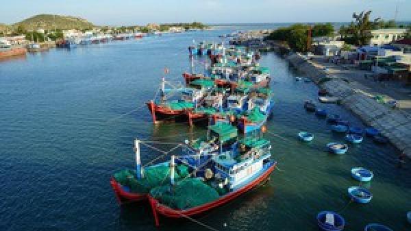 Ninh Thuận hướng tới phát triển đột phá các ngành kinh tế biển