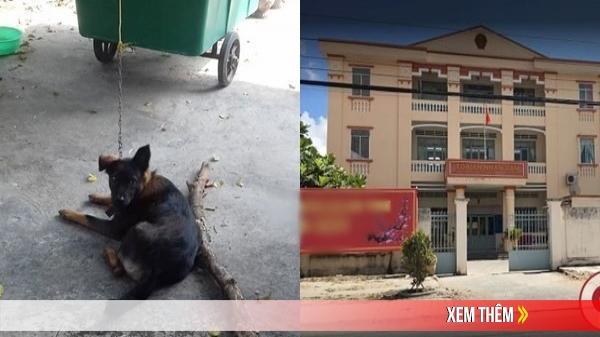 Tiền Giang: Hy hữu hàng xóm kiện nhau ra tòa giành quyền nuôi chó