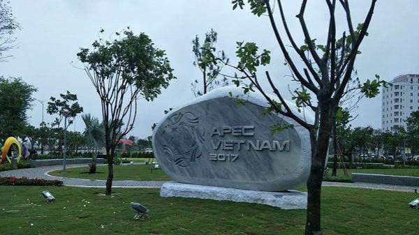 Chiêm ngưỡng vườn tượng APEC đẹp long lanh trong mưa