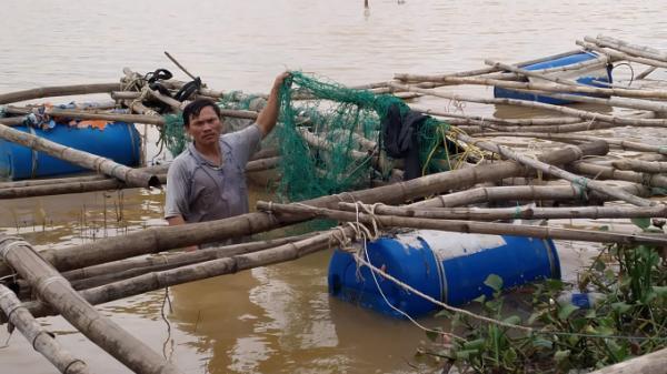 Quảng Trị: Hàng trăm tấn tôm, cá trôi theo dòng lũ