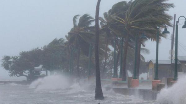 Bão số 12 gây gió giật cấp 8 tại Phú Yên, từ Đà Nẵng đến Khánh Hòa mưa to
