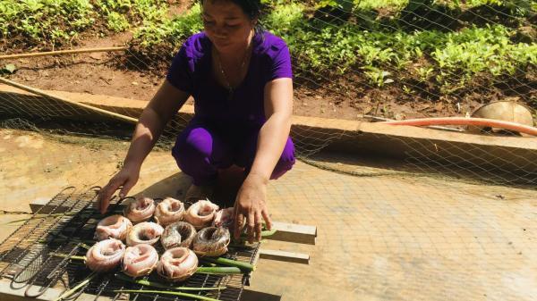 Cá lóc nướng - Món ăn dân dã mà ngon của người Quảng Trị