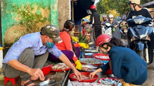 Quảng Trị: Ngư dân bãi ngang được mùa cá khoai