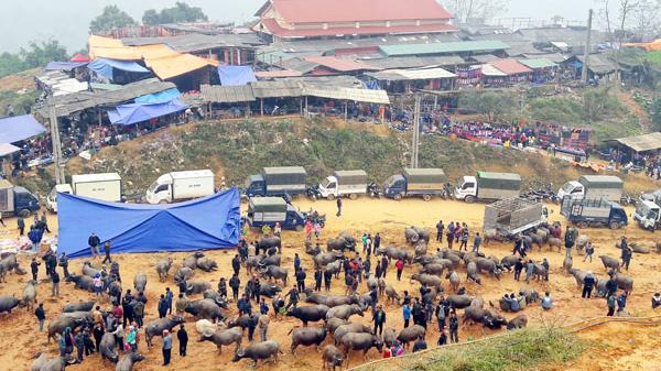 Theo chân du khách nước ngoài đi chợ Cốc Ly (Lào Cai)