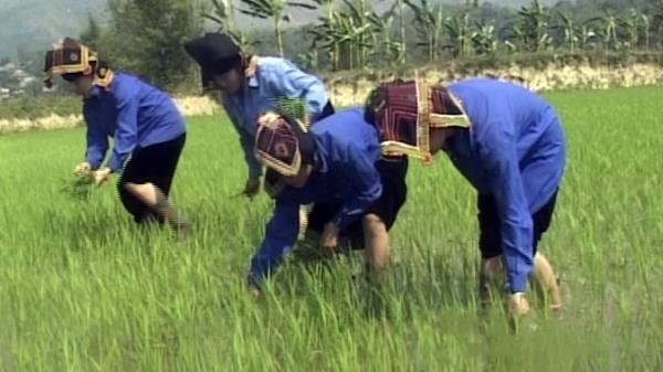 Điện Biên tiếp nhận hơn 2,4 tỷ đồng từ tổ chức CARE Quốc tế tại Việt Nam