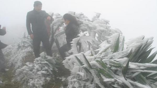 Thời tiết 7/2: Điện Biên vẫn rét đậm, rét hại