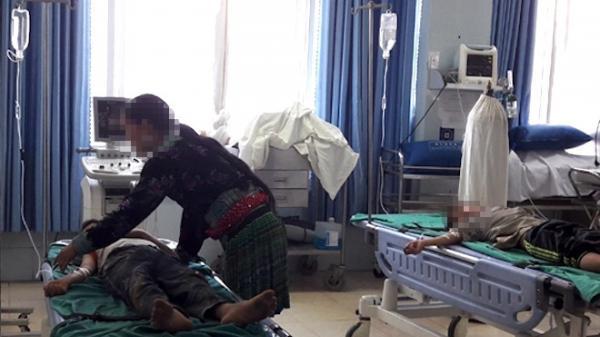 """Điện Biên: Rủ nhau """"ăn thử"""" lá ngón, 2 học sinh tiểu học bị ngộ độc nặng"""