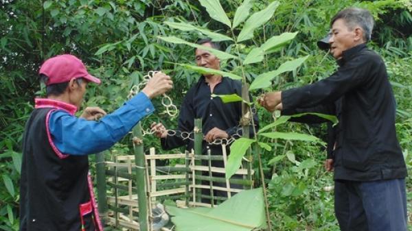 'Lễ cầu mùa' độc đáo của đồng bào dân tộc Si La tại Điện Biên