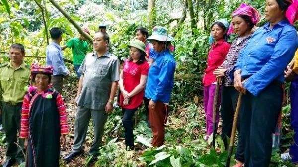 Điện Biên: Chi trả trên 16 tỷ đồng tiền DVMTR tại Mường Nhé