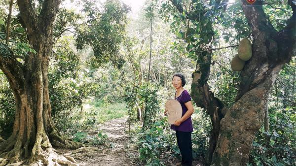 Cô giáo về hưu 15 năm sống trên ốc đảo: Không ra chợ, không biết bệnh tật và không cần đến tiền!