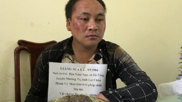Điện Biên: Bắt một đối tượng vận chuyển trái phép 2kg thuốc phiện tại huyện Mường Nhé